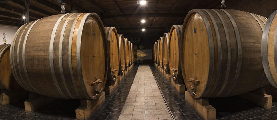 Large oak casks